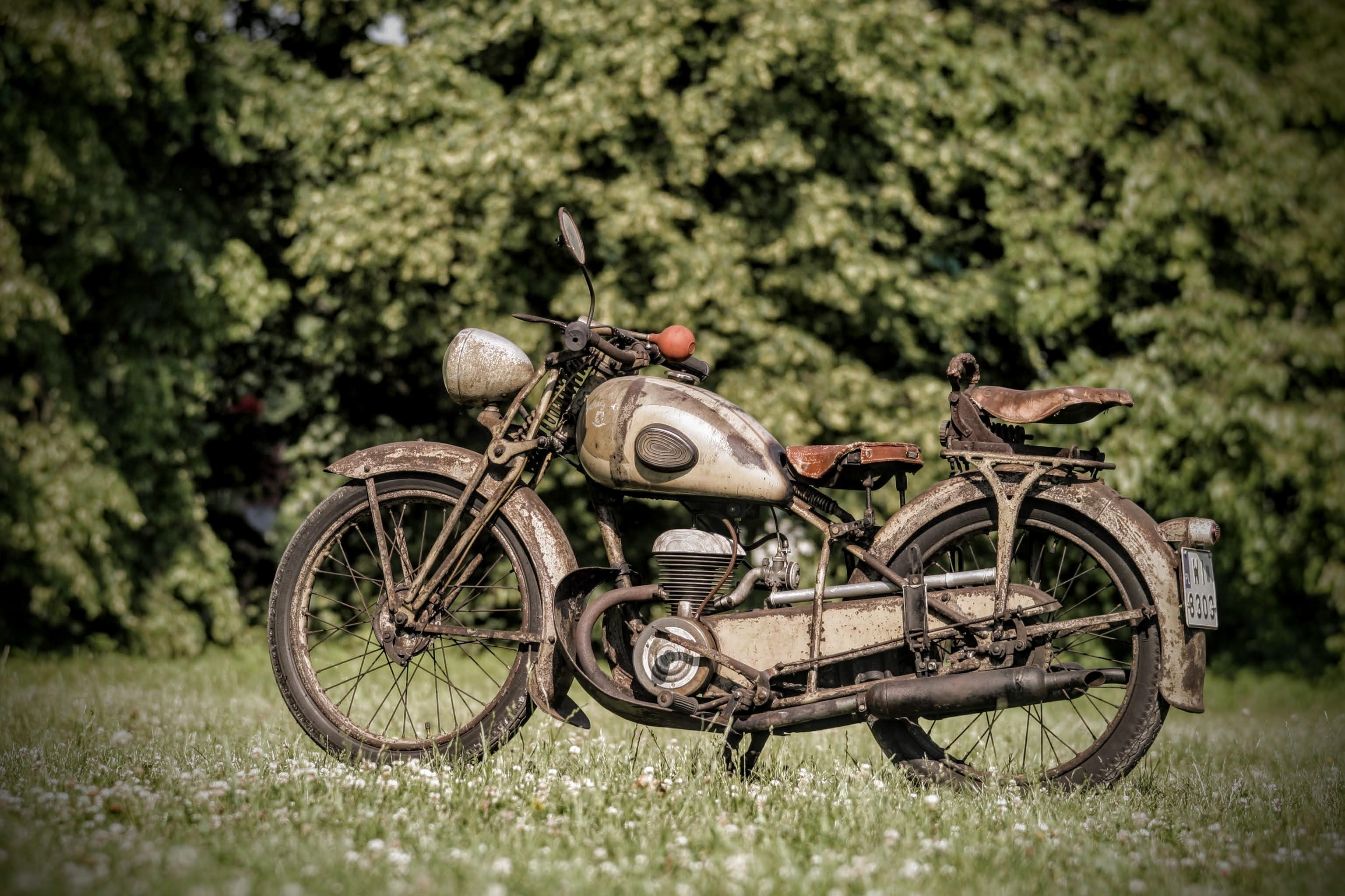 W roku 1930 Peugeot przejął inną francuską markę – Automoto - i od tego czasu pod własnym logo rozpoczął produkcję lekkich, prostych, dwusuwowych motocykli. Bazą opisywanego motocykla był model P53 z roku 1946, ze sztywnym tyłem i trapezowym zawieszeniem przedniego koła, tak jak w wersjach przedwojennych. Peugeot przez 10 lat rozwijał tę konstrukcję, budując na jej bazie wiele podobnych do siebie wersji - 55 AL, C, T, TA, TC, TCL, GL, GLT, GTS. Było ich sporo, jednak różniły się w zasadzie detalami czy wyposażeniem dodatkowym.