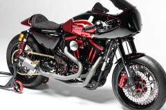 Gold-Coast-XRTT-1200-Daytona