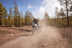 82094_Honda CB500X YM19 8552