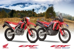 The new CRF300L and CRF300 RALLY – Honda's lightweight dual-purpose bikes receive major updates