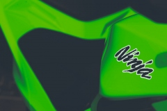 Kawasaki_Ninja_300_08_owiewka