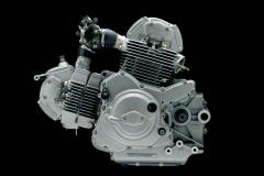 Ducati-Monster-04-silnik-2