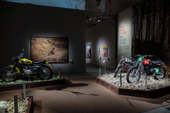 REGGIA-7- mostra Easy Rider-IMG_9567