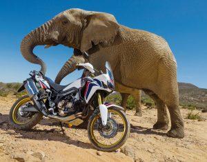 Honda-CRF1000L-AfricaTwin-YM16-D1693