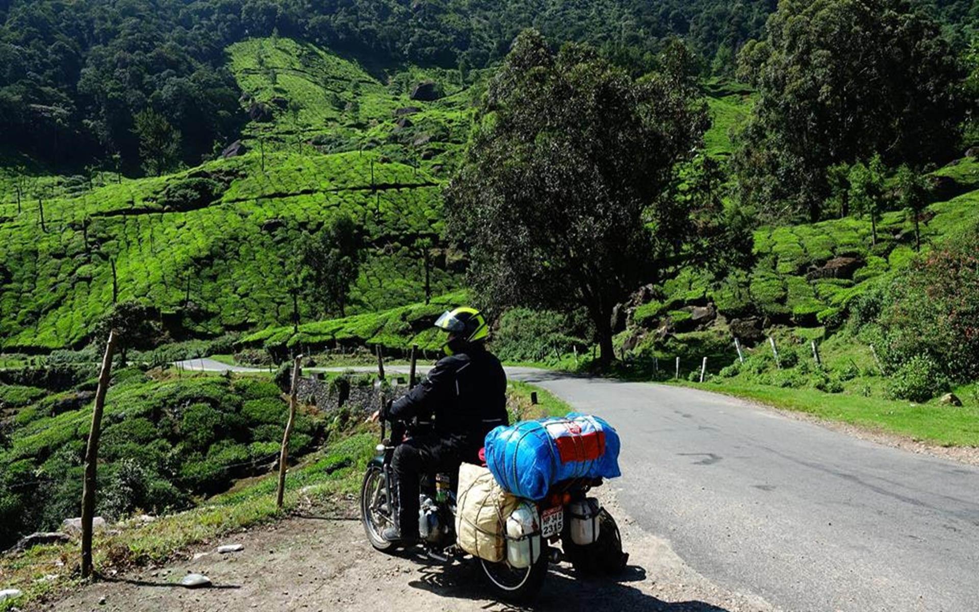 Przez herbaciane wzgórza