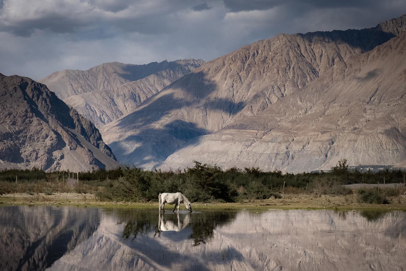 Leh, Spiti Valley, Mud, Pin Valley, Himachal Pradesh, India, Kaza, Chandra Tal, Rohtang pass, Manali